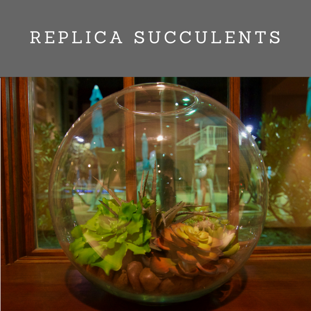 Favorite projects- replica succulents