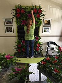 Christy arranging plants
