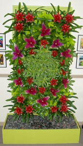 We love our living wall!