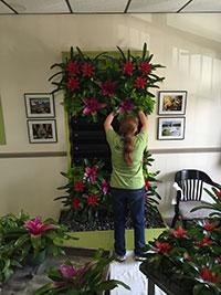 Christy placing plants