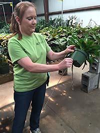 Christy prepares plants